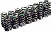 Cosworth valve springs